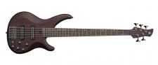 YAMAHA TRBX 505 TBN - pětistrunná baskytara