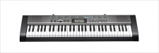 Casio CTK 1300