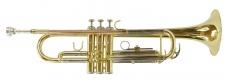 Truwer 6418 LN - lakovaná trubka