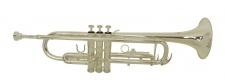 Truwer 6418 S - postříbřená trubka s pouzdrem