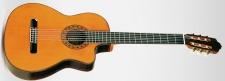 ESTEVE ELEC (smrk) - klasická kytara se snímačem