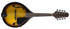 Stagg M40 S - bluegrassová mandolína